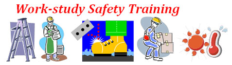 Icon of Workstudy Safety Training modules